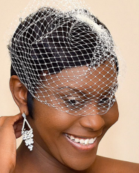 Black bridal hairstyle with net.PNG