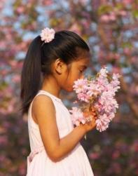 Asian flower girl with pony tail hairstyle picture.jpg