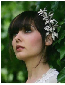 Bridal hair style with silver floral hair clip.PNG