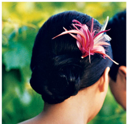 Asian bridal wedding hairstyle with pink tropical flower hairclip.PNG