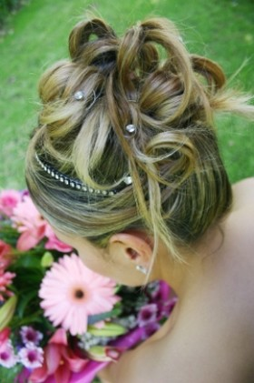 wedding updo with crystal clips.jpg
